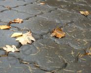 Тротуарная плитка клевер, аллея в центральном парке Тула
